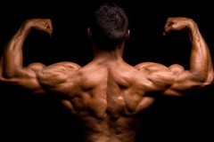 Beginner Back Workout