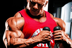 Power Muscle Burn Bicep Workout